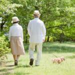 食後の「ちょっとお散歩」が効果的!食後高血糖を防ぐウォーキング習慣