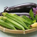 オクラ・茄子など。旬の野菜を美味しく食べよう