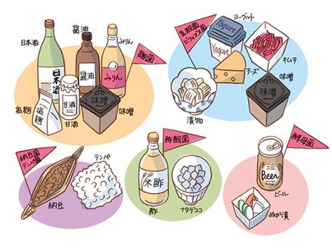 知ればナットク!発酵食品が身体にいい理由