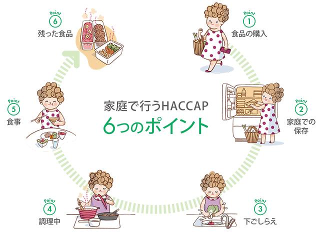 家庭で行うHACCP。夏の食中毒予防6つのポイントとは?