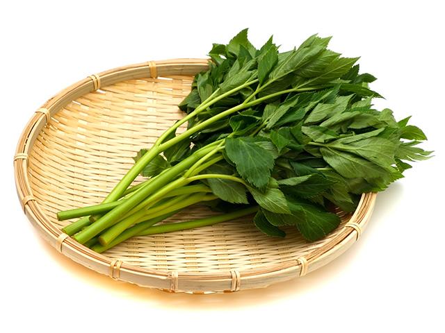 身体にごちそう!明日葉やケールの豊富な栄養価