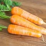 冬は根菜が美味しい!野菜不足が気になる季節の救世主