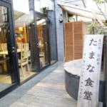 温故知新。日本古来の知恵がつまった自然食と発酵食のススメ