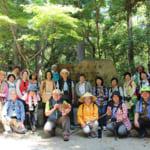 よみがえりの地・熊野古道。神々が鎮めし森を歩く健康道場ツアー