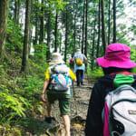 健康増進を旅の新たな魅力に!健康道場と行く世界遺産・熊野古道(前編)