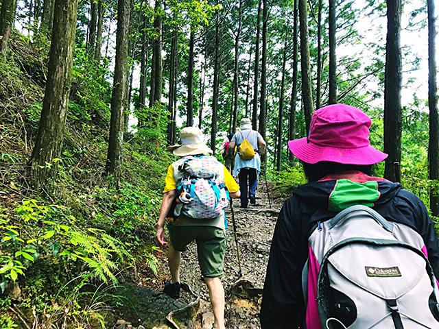 [健康道場ツアー] 熊野セラピストと歩く、世界遺産・熊野古道