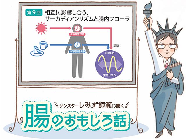 腸のおもしろ話 第9回 相互に影響し合う、サーカディアンリズムと腸内フローラ