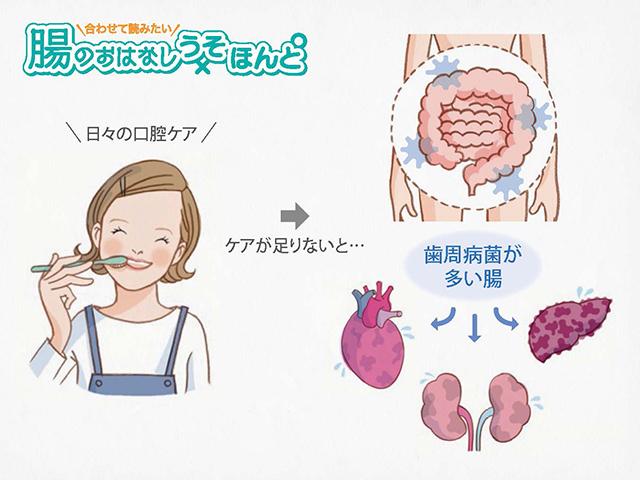 歯周病と糖尿病に関係があることはよく知られていますが、肝臓の病気にも関係している?