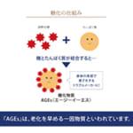 【米ぬか研究レポート】心身健康道場を原点とした、 サンスターの「玄米菜食・米ぬか・糖」の研究